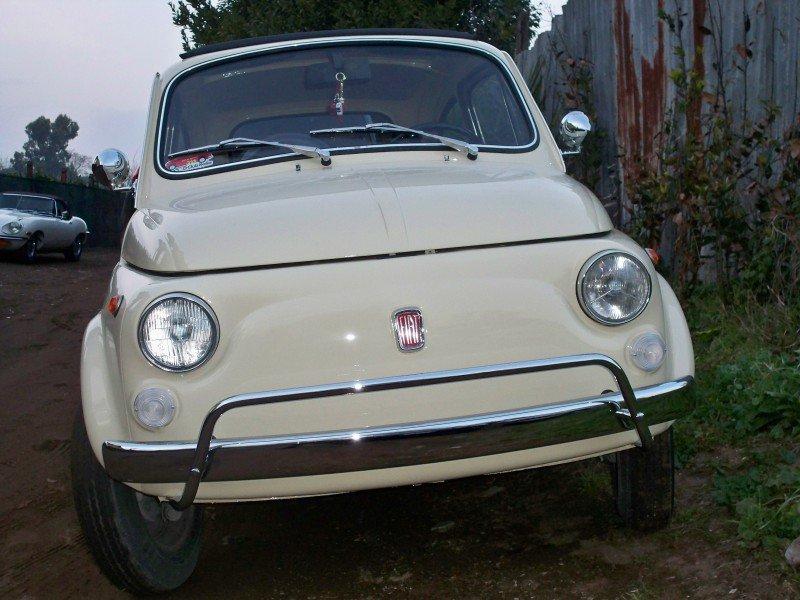 La Fiat 500 di caimano500